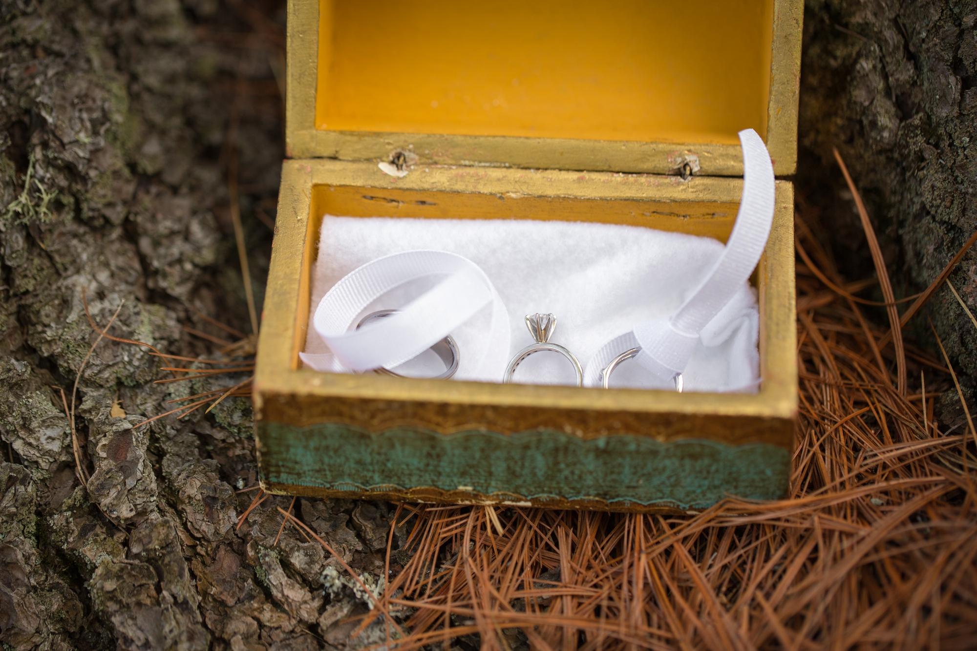 Albany NY Wedding Photographer Justin Tibbitts Photography 2014 Best of Albany NY Weddings-4492197596296