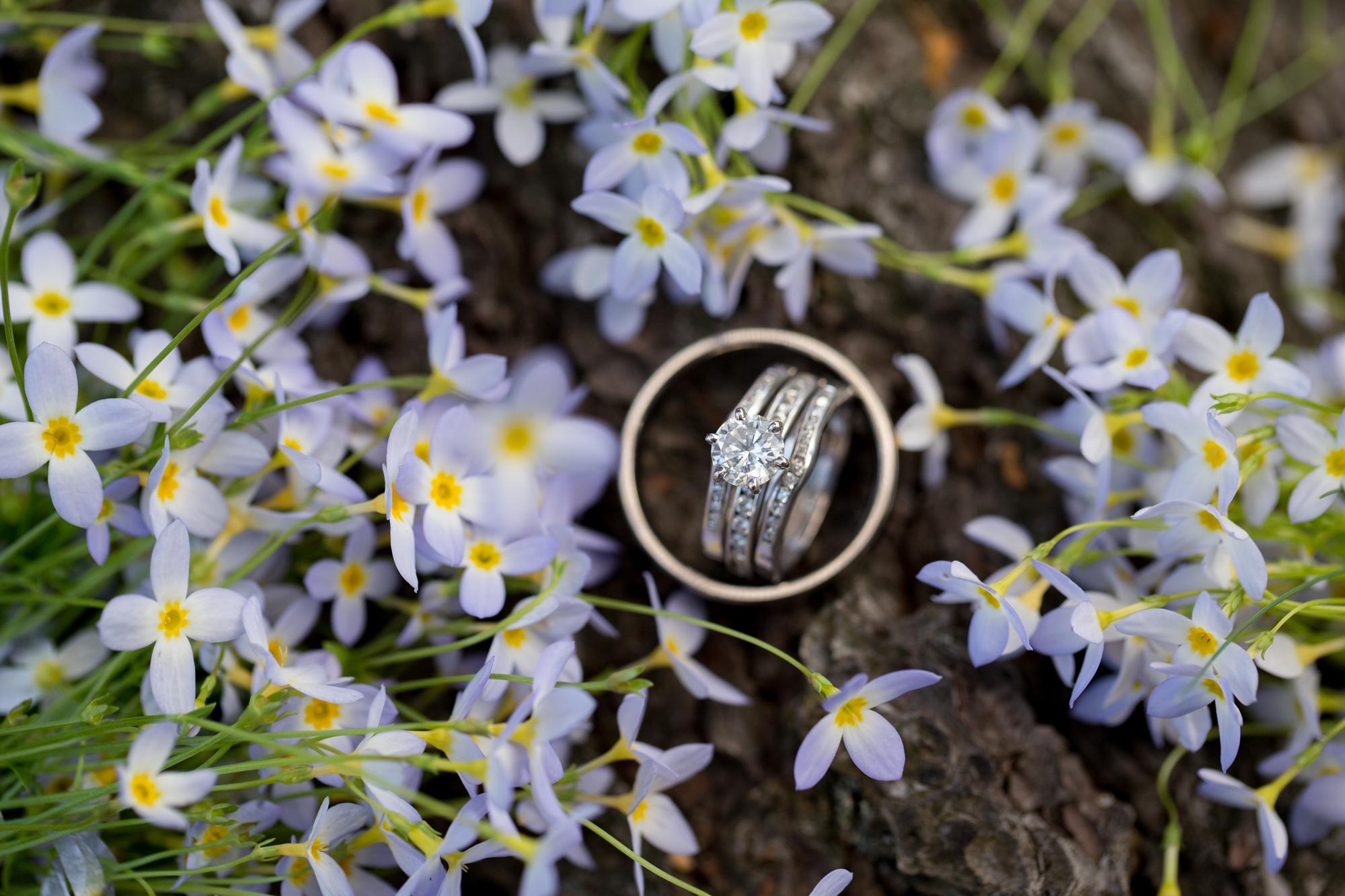 Albany NY Wedding Photographer Justin Tibbitts Photography 2014 Best of Albany NY Weddings-4518911121171
